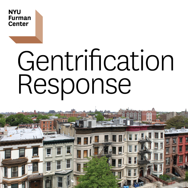 revitalization in harlem essay