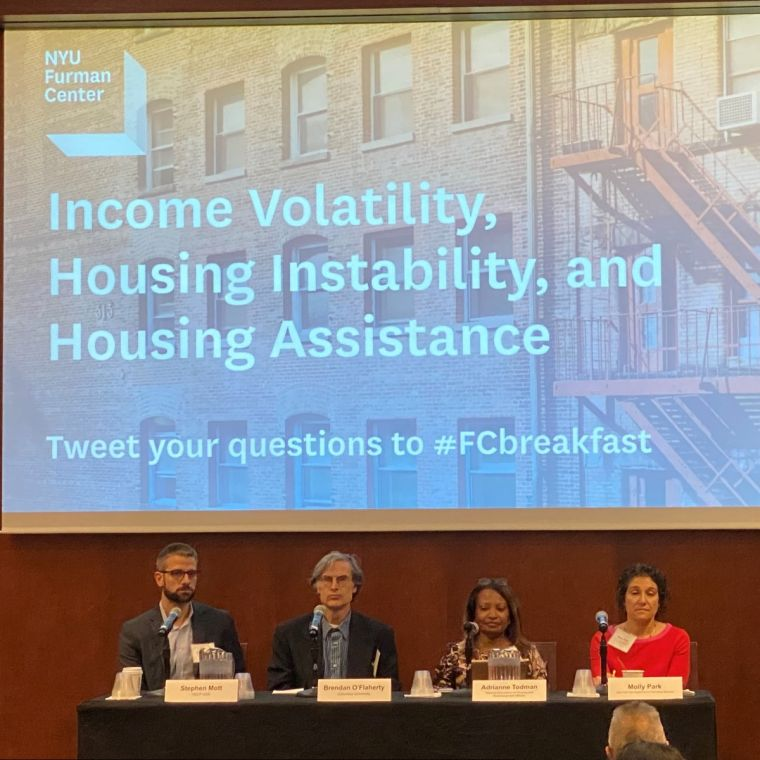 Income Volatility Panelists